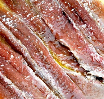 Apartments in estartit and savour the best anchovies in the country